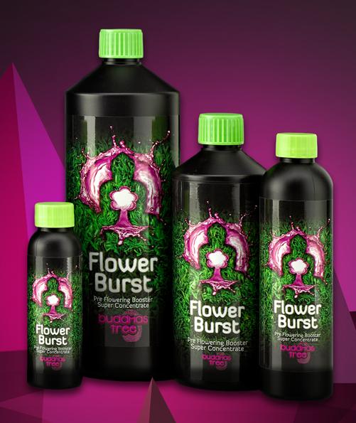 FLOWER BURST 1 L