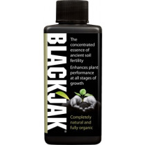 BLACKJAK 300ML