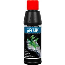 pH UP 250ml