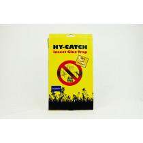FLY TRAPS PACK OF 10