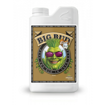 BIG BUD LIQUID COCO 1L