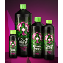FLOWER BURST 250 ml