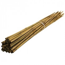 BAMBOO STAKES 120CM