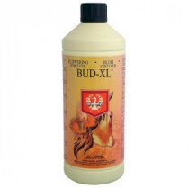 BUD XL 500ML